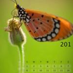 экономический календарь, что дает экономический календарь, что такое экономический календарь, что можно узнать из экономического календаря