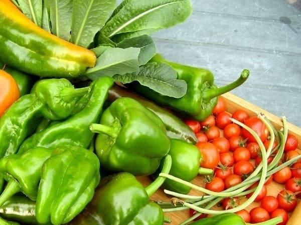 Овощной цех предприятия общественного питания
