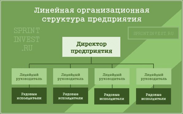 Линейная организационная структура предприятия