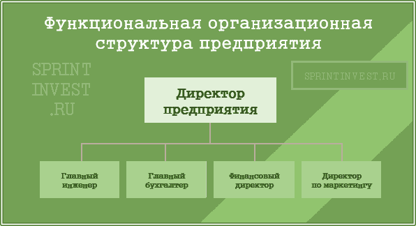 Функциональная организационная структура предприятия