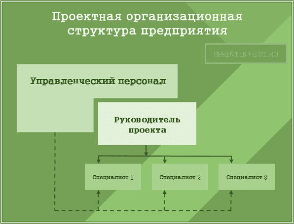 Проектная организационная структура предприятия