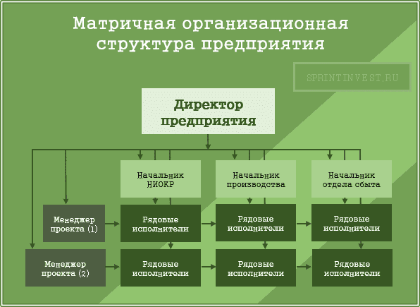 Матричная организационная структура предприятия