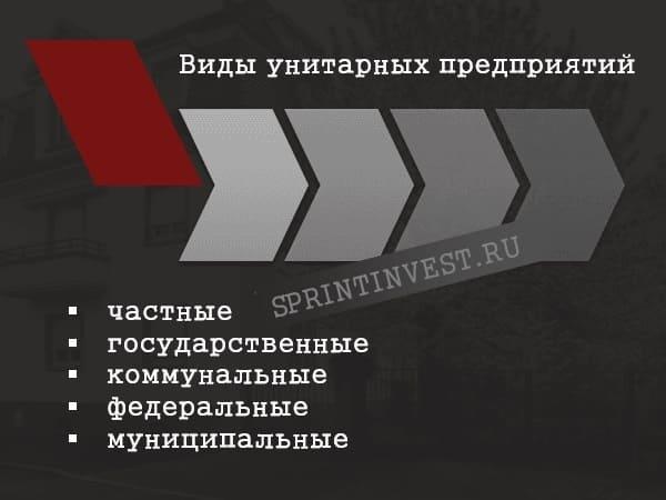 Классификация унитарных предприятий