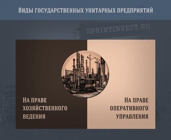 Виды государственных унитарных предприятий