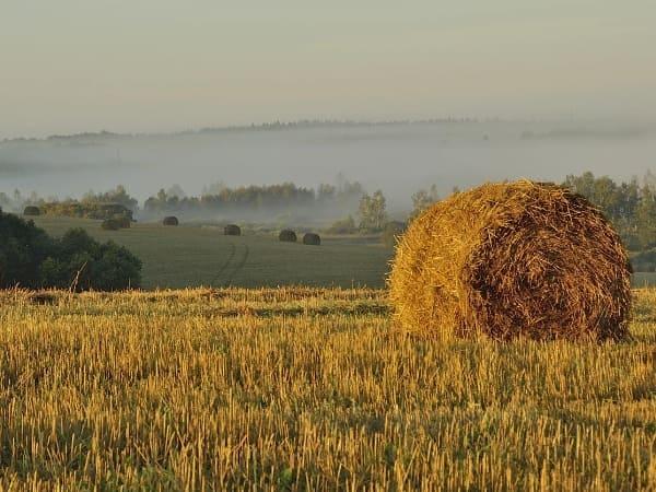 Инвестиционные программы Смоленской области
