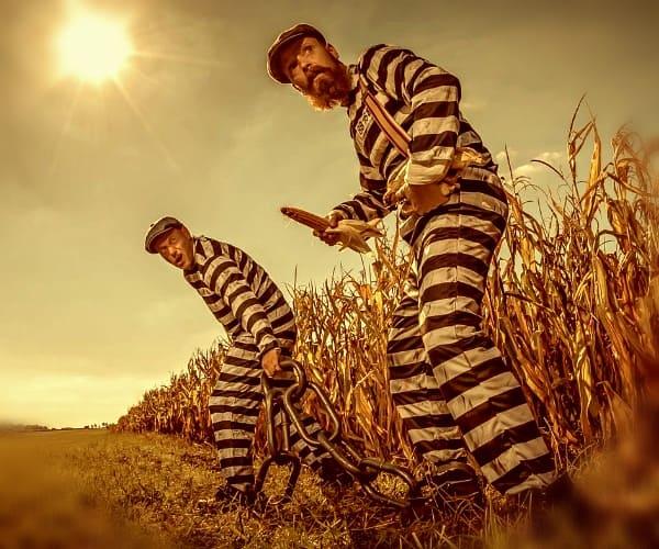 Равновесие Нэша в дилемме заключенных