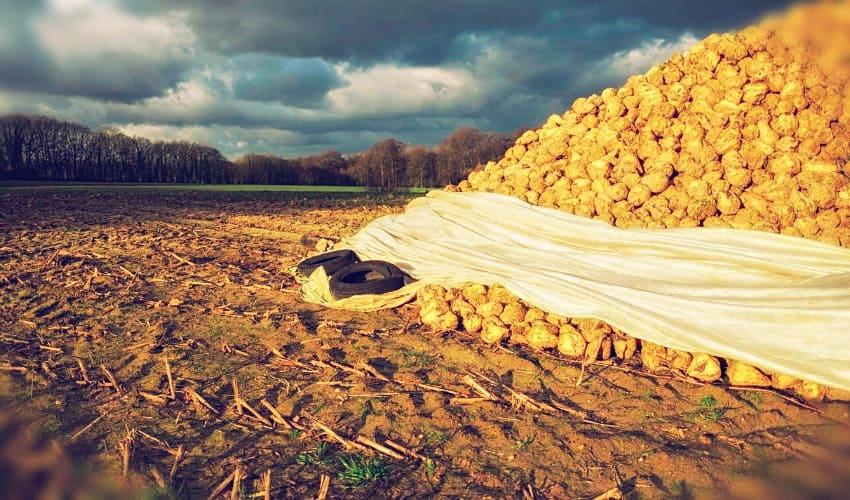 Экономия объема производства: понятие, пример, расчет
